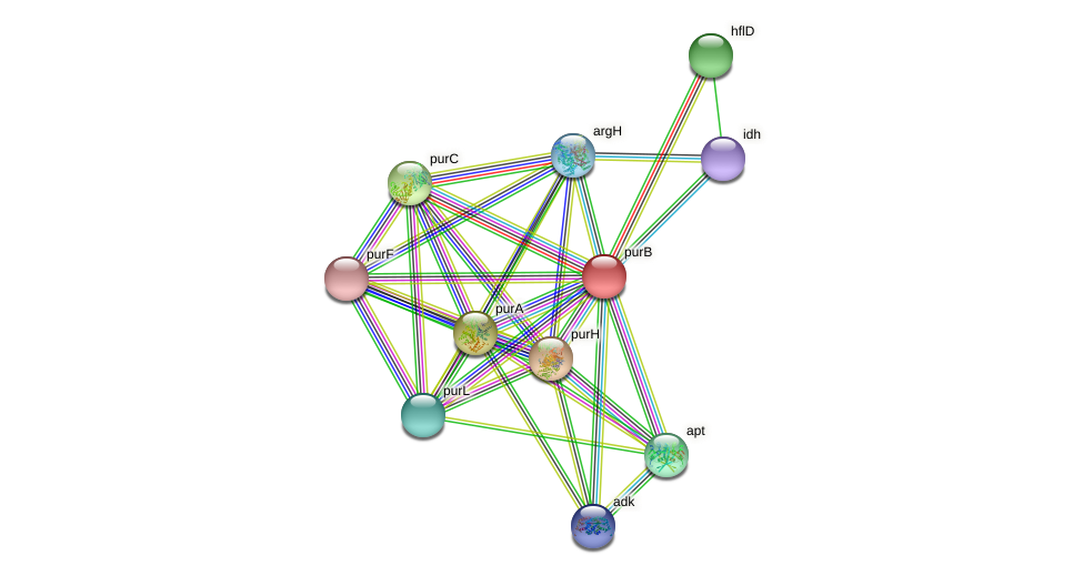 DR97_5333 protein (Pseudomonas aeruginosa) - STRING interaction network