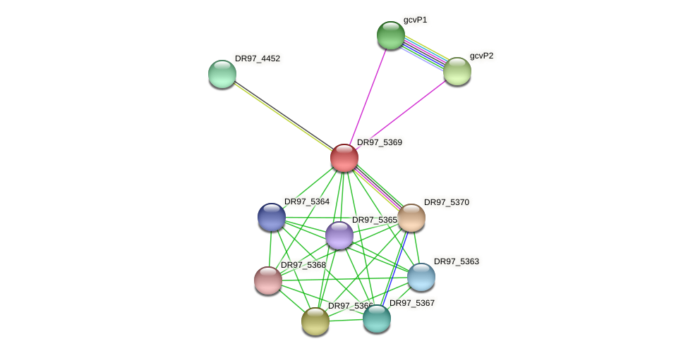 DR97_5369 protein (Pseudomonas aeruginosa) - STRING interaction network