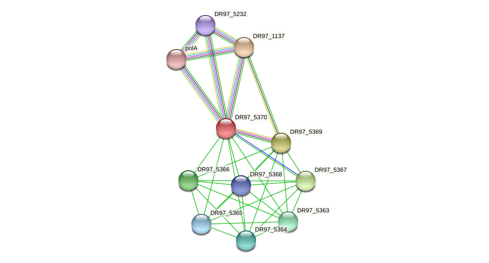 DR97_5370 protein (Pseudomonas aeruginosa) - STRING interaction network