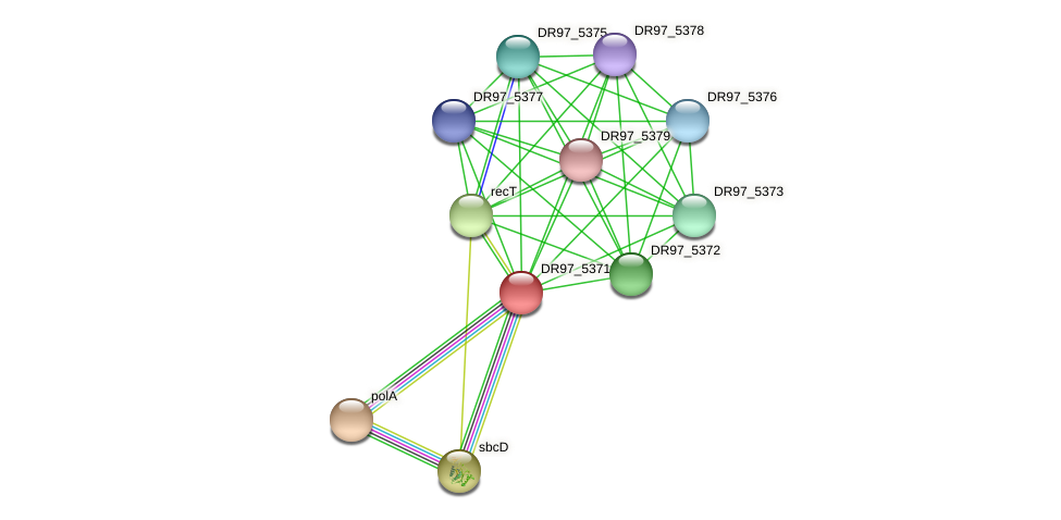 DR97_5371 protein (Pseudomonas aeruginosa) - STRING interaction network