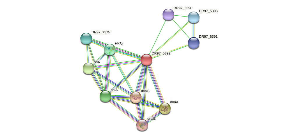 DR97_5392 protein (Pseudomonas aeruginosa) - STRING interaction network