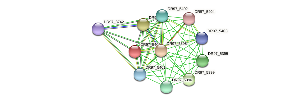 DR97_5400 protein (Pseudomonas aeruginosa) - STRING interaction network