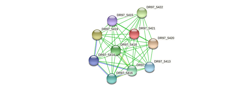 DR97_5421 protein (Pseudomonas aeruginosa) - STRING interaction network