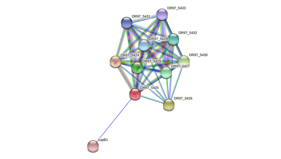 DR97_5425 protein (Pseudomonas aeruginosa) - STRING interaction network