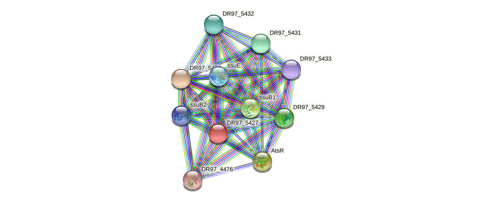 DR97_5427 protein (Pseudomonas aeruginosa) - STRING interaction network