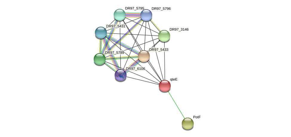 DR97_5452 protein (Pseudomonas aeruginosa) - STRING interaction network