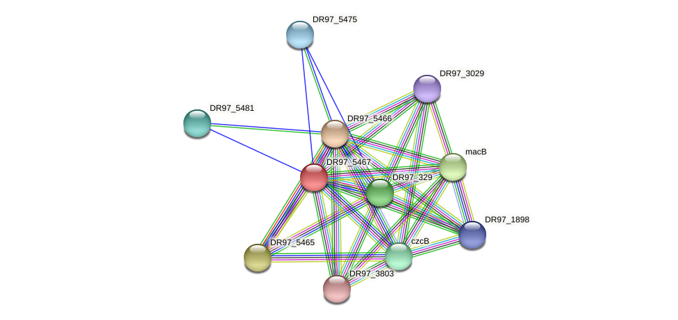 DR97_5467 protein (Pseudomonas aeruginosa) - STRING interaction network