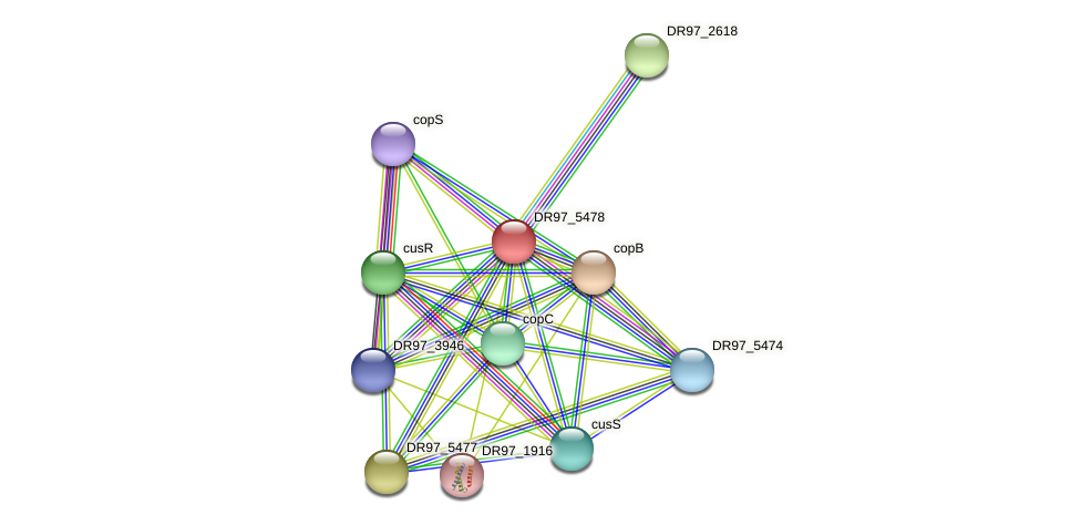 pcoA protein (Pseudomonas aeruginosa) - STRING interaction network