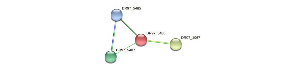 DR97_5486 protein (Pseudomonas aeruginosa) - STRING interaction network