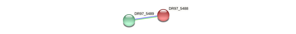 DR97_5488 protein (Pseudomonas aeruginosa) - STRING interaction network