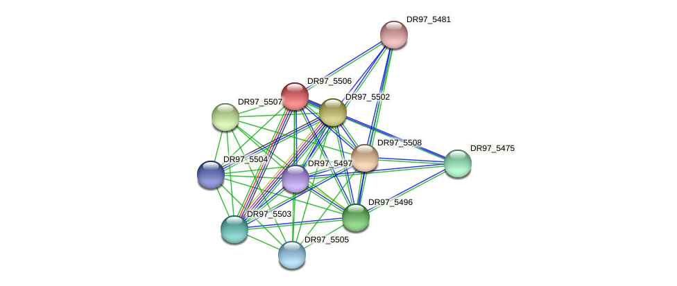 DR97_5506 protein (Pseudomonas aeruginosa) - STRING interaction network