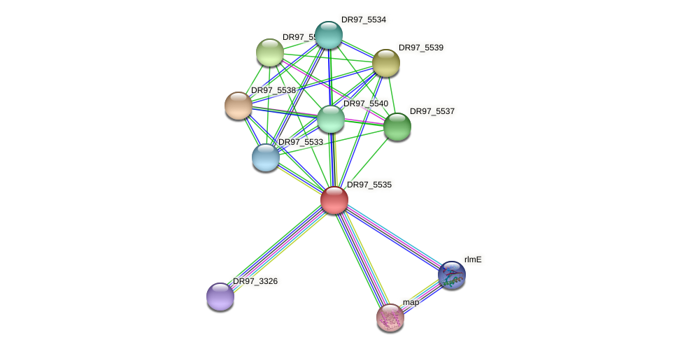 DR97_5535 protein (Pseudomonas aeruginosa) - STRING interaction network