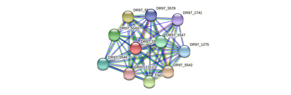 DR97_5545 protein (Pseudomonas aeruginosa) - STRING interaction network