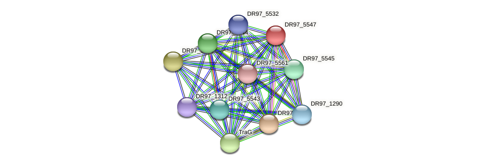 DR97_5547 protein (Pseudomonas aeruginosa) - STRING interaction network