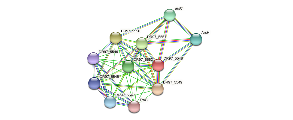 DR97_5548 protein (Pseudomonas aeruginosa) - STRING interaction network