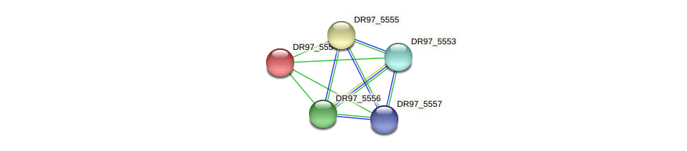 DR97_5554 protein (Pseudomonas aeruginosa) - STRING interaction network