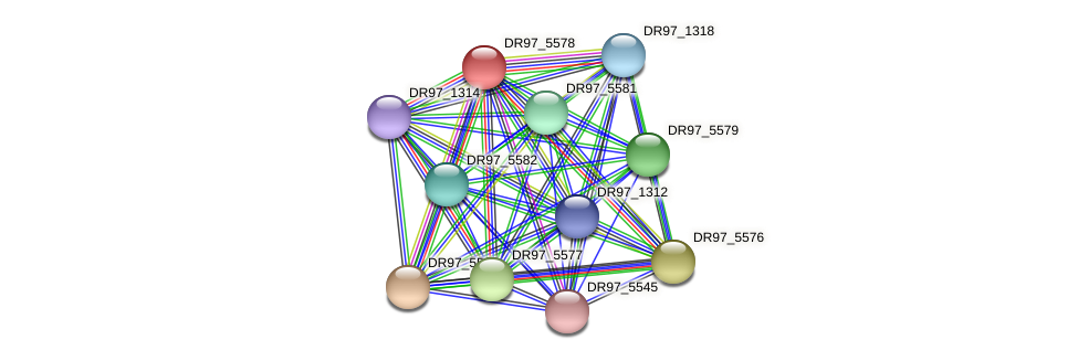 DR97_5578 protein (Pseudomonas aeruginosa) - STRING interaction network