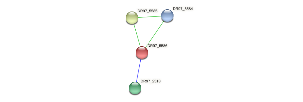 DR97_5586 protein (Pseudomonas aeruginosa) - STRING interaction network