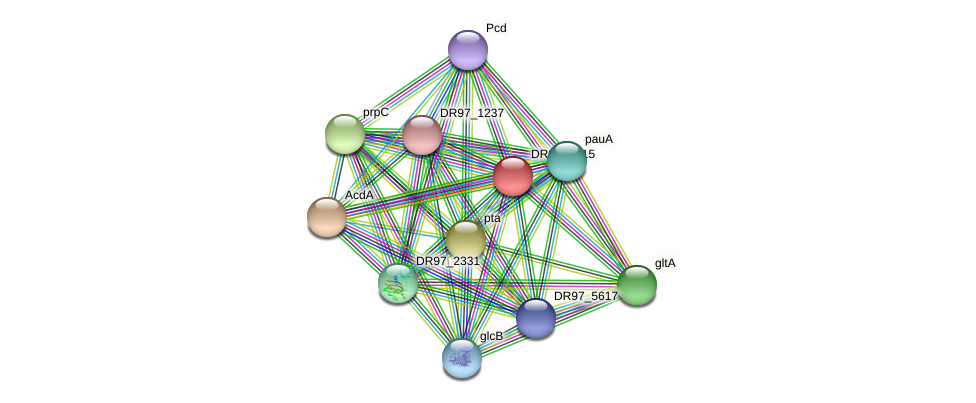 DR97_5615 protein (Pseudomonas aeruginosa) - STRING interaction network