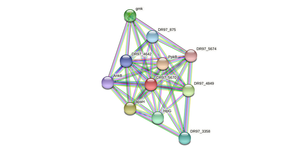 DR97_5670 protein (Pseudomonas aeruginosa) - STRING interaction network