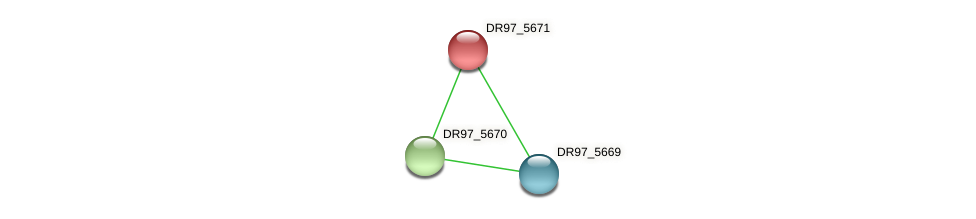 DR97_5671 protein (Pseudomonas aeruginosa) - STRING interaction network