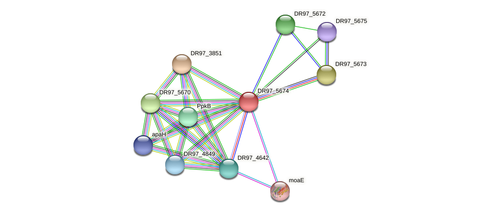 DR97_5674 protein (Pseudomonas aeruginosa) - STRING interaction network