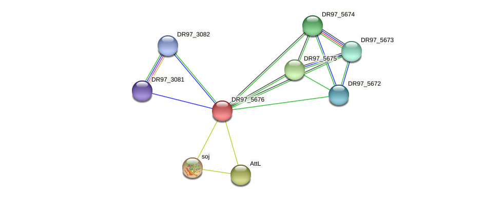 DR97_5676 protein (Pseudomonas aeruginosa) - STRING interaction network