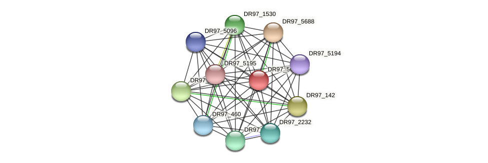 DR97_5689 protein (Pseudomonas aeruginosa) - STRING interaction network