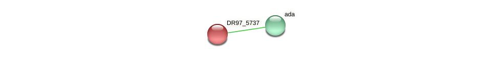 DR97_5737 protein (Pseudomonas aeruginosa) - STRING interaction network