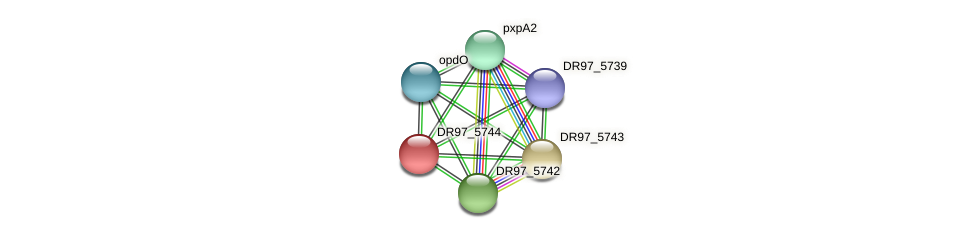DR97_5744 protein (Pseudomonas aeruginosa) - STRING interaction network