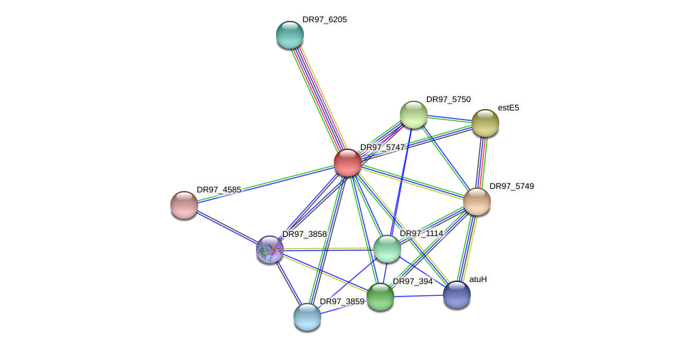 DR97_5747 protein (Pseudomonas aeruginosa) - STRING interaction network