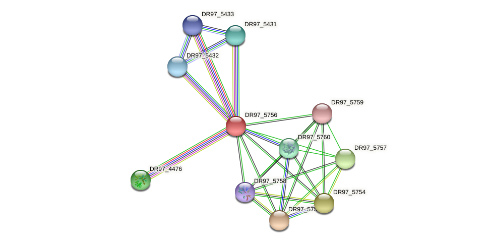 DR97_5756 protein (Pseudomonas aeruginosa) - STRING interaction network