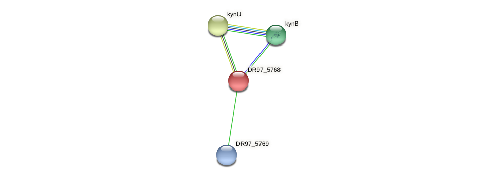 DR97_5768 protein (Pseudomonas aeruginosa) - STRING interaction network