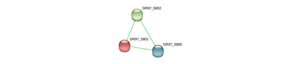 DR97_5801 protein (Pseudomonas aeruginosa) - STRING interaction network