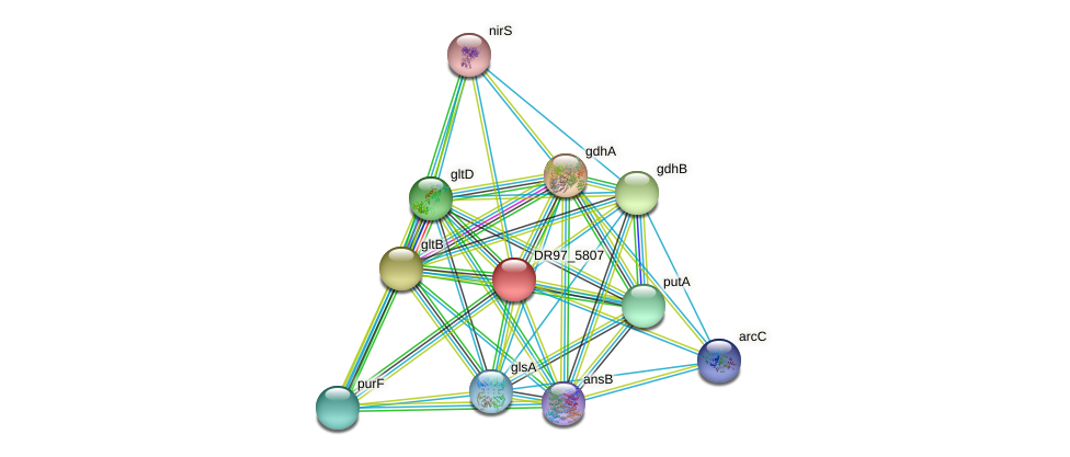 DR97_5807 protein (Pseudomonas aeruginosa) - STRING interaction network
