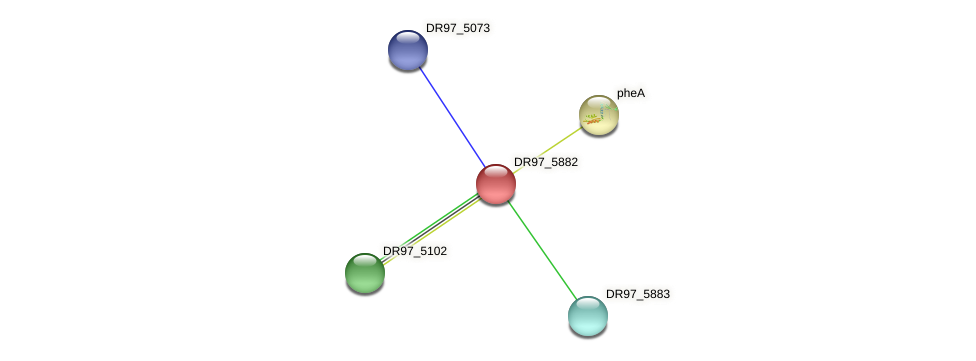 DR97_5882 protein (Pseudomonas aeruginosa) - STRING interaction network