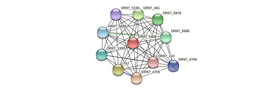 DR97_5906 protein (Pseudomonas aeruginosa) - STRING interaction network