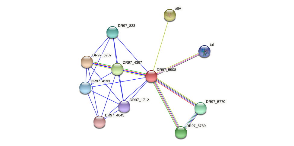 DR97_5908 protein (Pseudomonas aeruginosa) - STRING interaction network