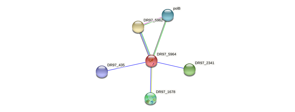 DR97_5964 protein (Pseudomonas aeruginosa) - STRING interaction network
