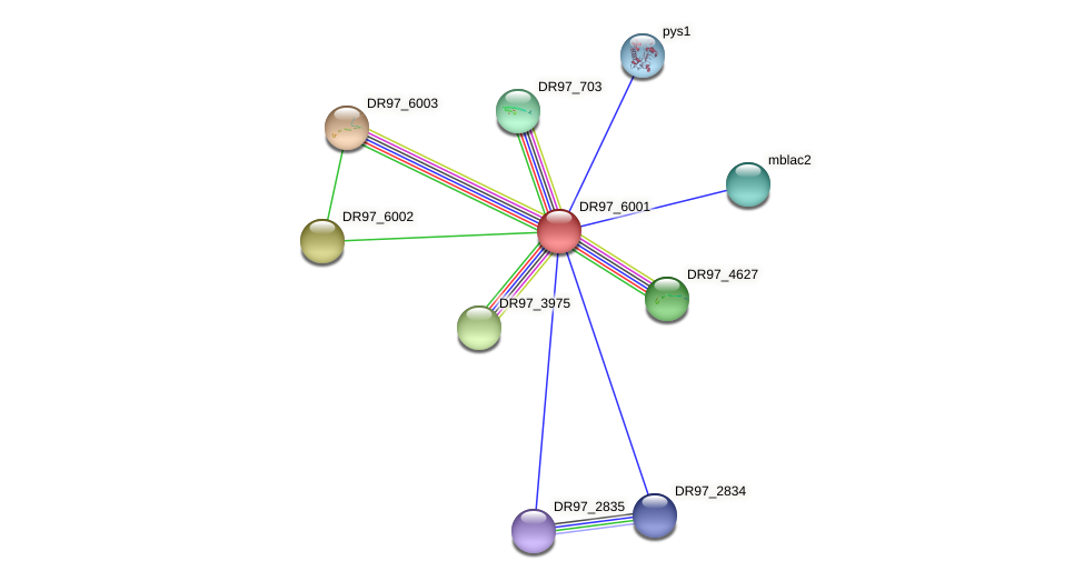 DR97_6001 protein (Pseudomonas aeruginosa) - STRING interaction network