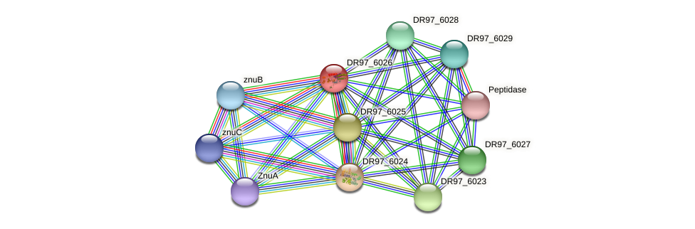 psaA protein (Pseudomonas aeruginosa) - STRING interaction network