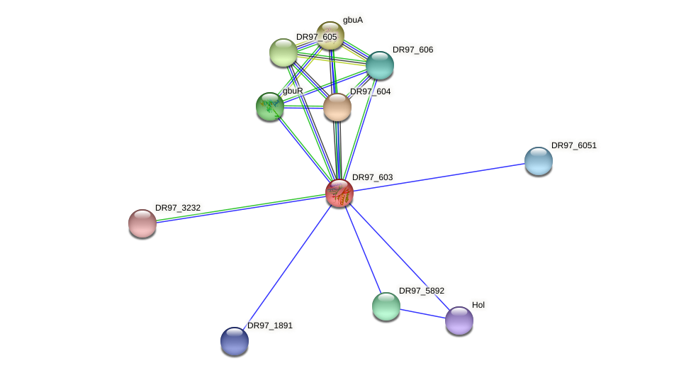 DR97_603 protein (Pseudomonas aeruginosa) - STRING interaction network
