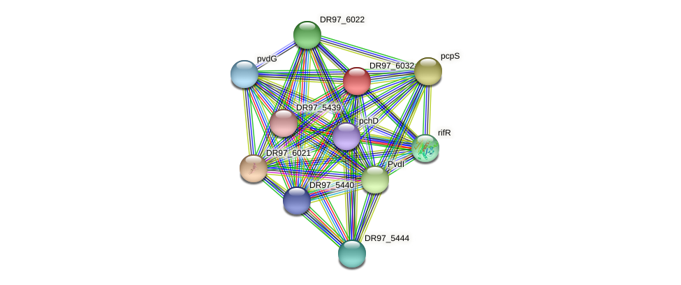 DR97_6032 protein (Pseudomonas aeruginosa) - STRING interaction network