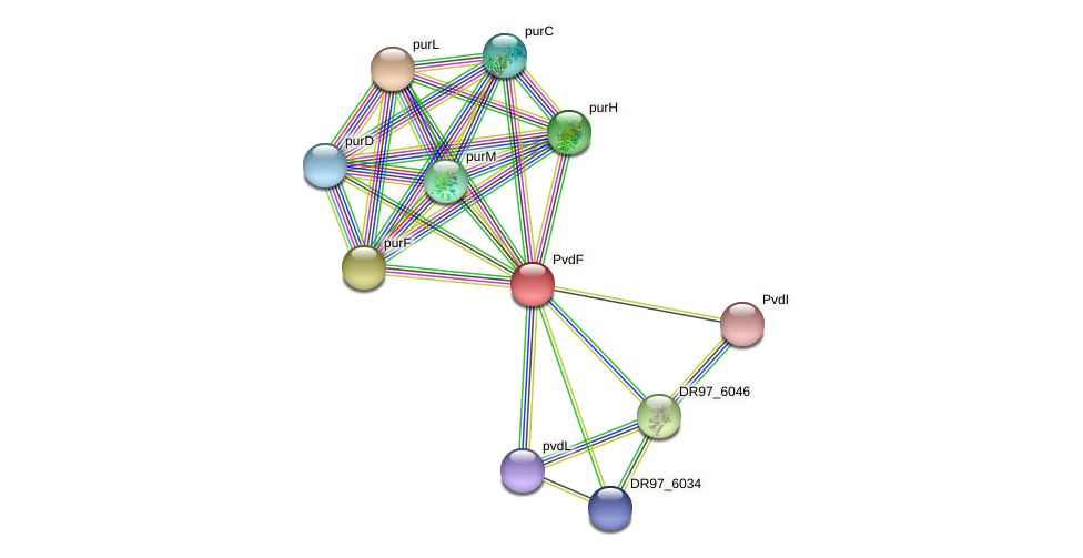 PA2396 protein (Pseudomonas aeruginosa) - STRING interaction network