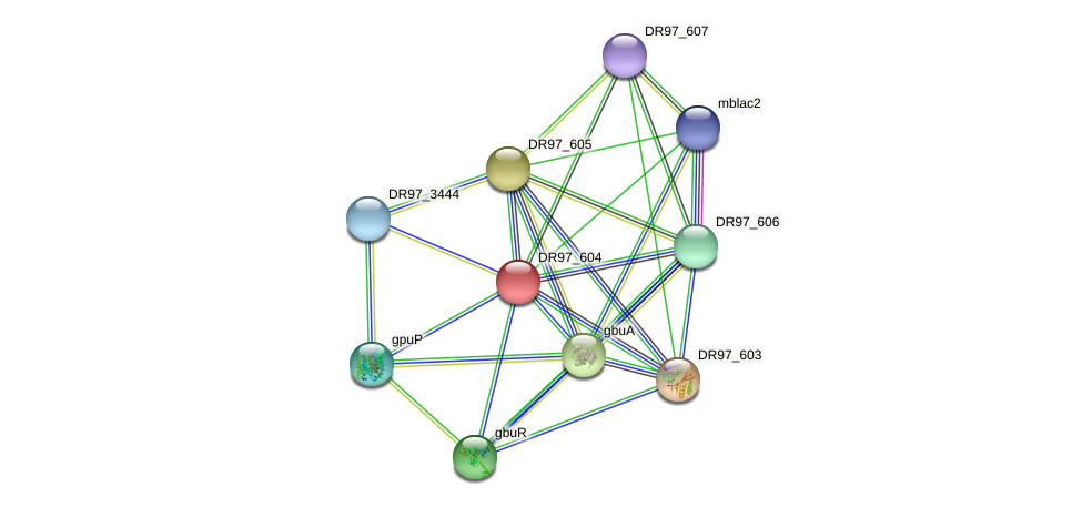 DR97_604 protein (Pseudomonas aeruginosa) - STRING interaction network