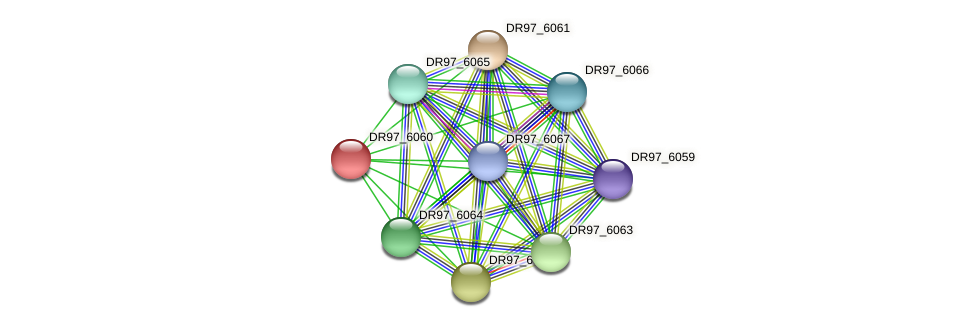DR97_6060 protein (Pseudomonas aeruginosa) - STRING interaction network