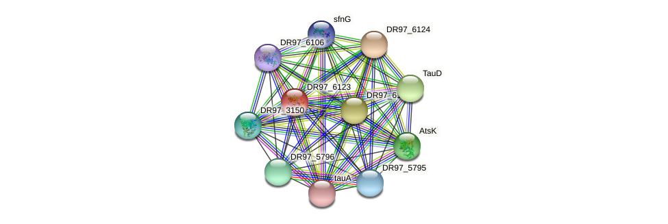 DR97_6123 protein (Pseudomonas aeruginosa) - STRING interaction network