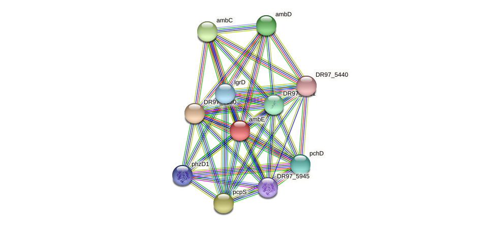 DR97_6131 protein (Pseudomonas aeruginosa) - STRING interaction network