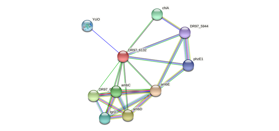 DR97_6132 protein (Pseudomonas aeruginosa) - STRING interaction network