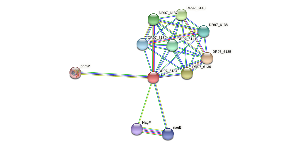 DR97_6134 protein (Pseudomonas aeruginosa) - STRING interaction network